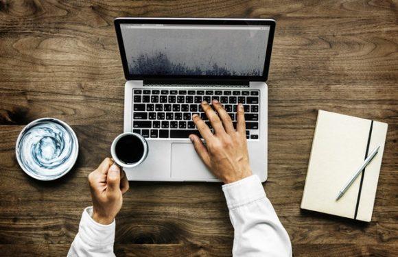 Online Education Background Checks