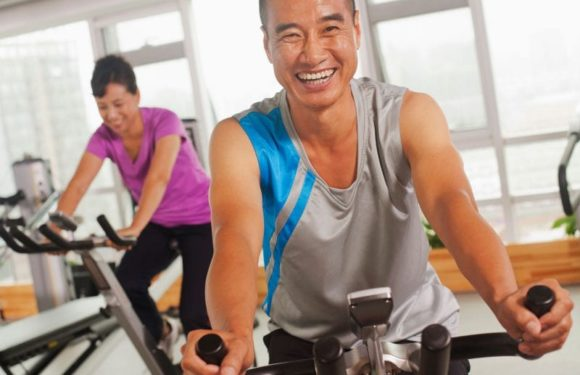 The Significance of Wellness Fitness